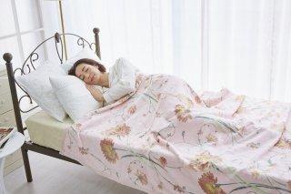 三和シール お得な訳あり!! シール織 綿毛布 花柄 フェアリー  シングル 140�×200� 国産 【メーカー直販価格】