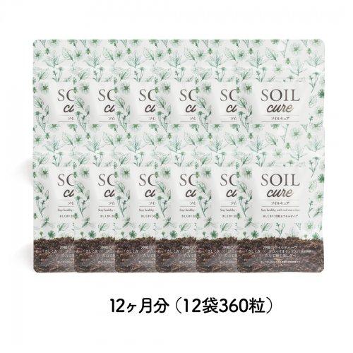 SOILcureさしくさファミリーバリューパック12ヵ月分(12袋360粒)