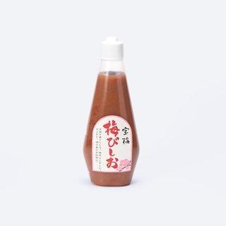 宝梅【梅びしお】お徳用チューブ入 UBT-13