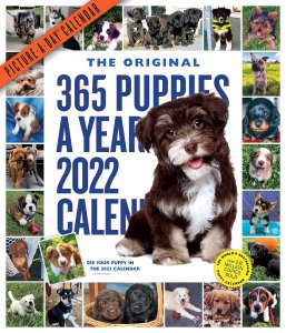 365 puppies a year 月めくりカレンダー