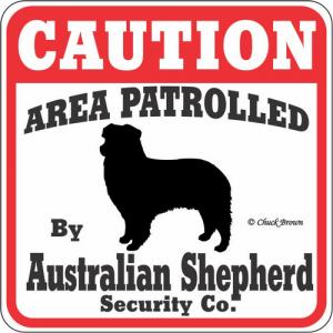 Caution サインボード オーストラリアンシェパード