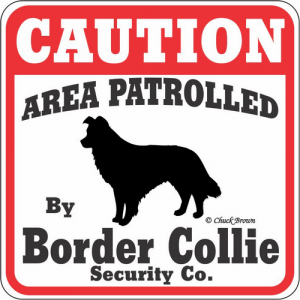 Caution サインボード ボーダーコリー