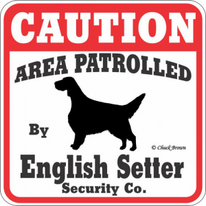 Caution サインボード イングリッシュセッター