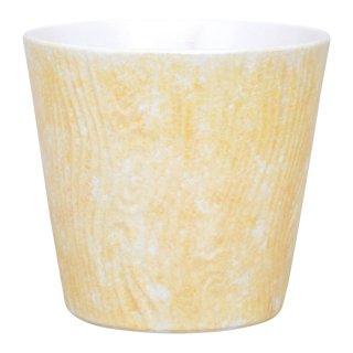 コーラルイエロー ロックカップ