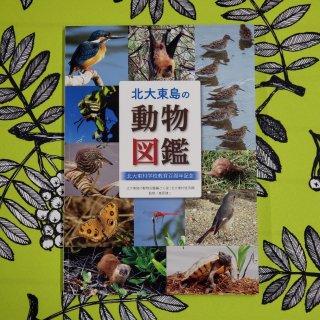 北大東島の動物図鑑