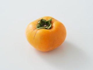 日本の美象徴 刀根小町 1kg<br>【 刀根柿(たねなし柿)】