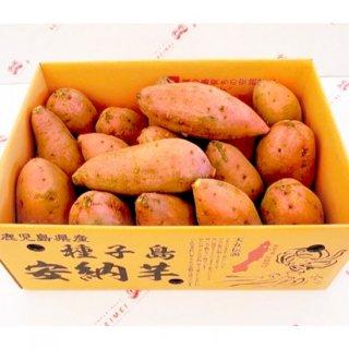 種子島安納地区の安納芋Sサイズ(5キロ)/西之表市商工会/REIMEI/常温80