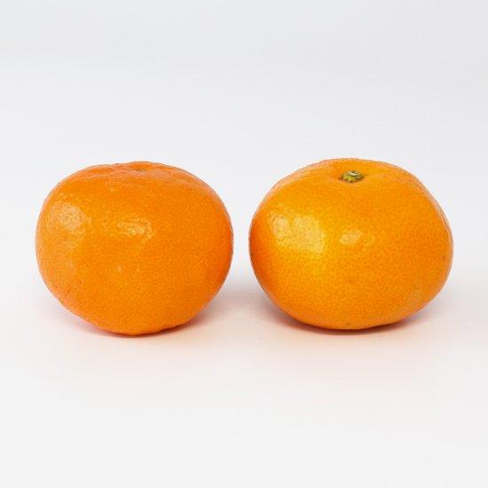 ゆら早生 特上 Lサイズ 3kg 果実個数 約20個(11/10以降順次出荷予定)