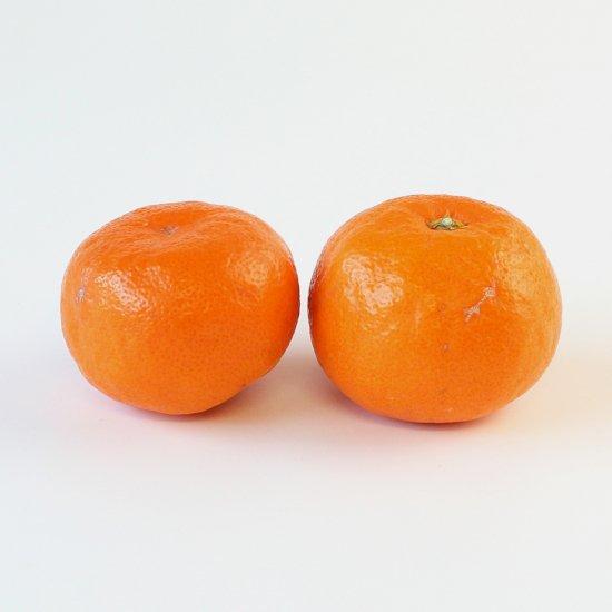 ゆら早生 上 Mサイズ 3kg 果実個数 約24個(11/10以降順次出荷予定)