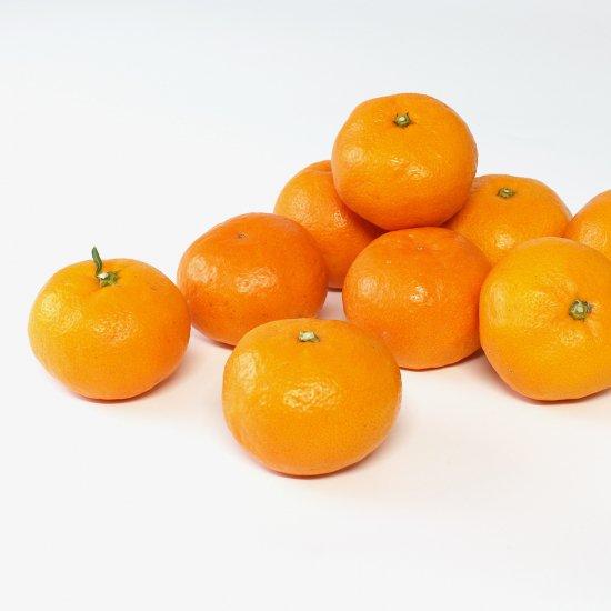 ゆら早生 上 Lサイズ 4.5kg 果実個数 約36個(11/10以降順次出荷予定)