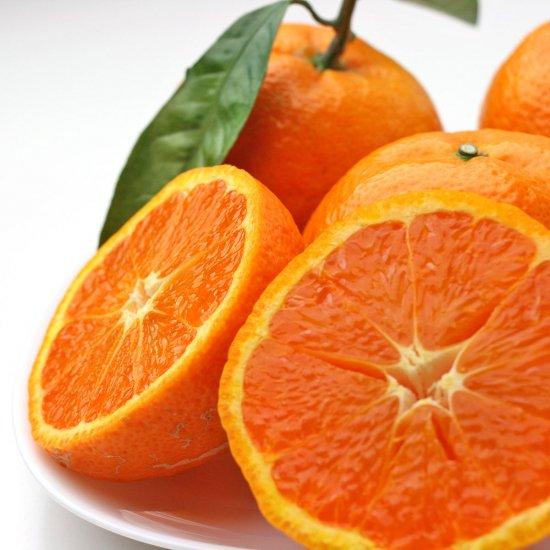 カラオレンジ 上 2Lサイズ 4.5kg(4/15以降出荷予定)