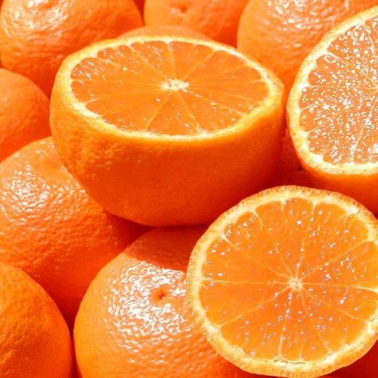 カラオレンジ 上 Lサイズ 4.5kg(4/15以降出荷予定)