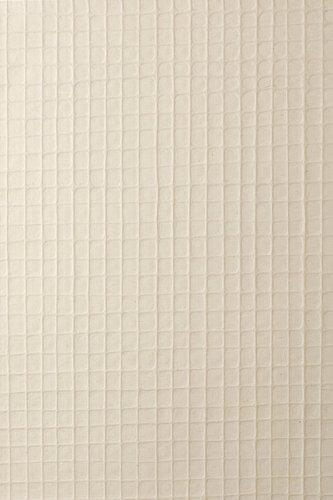 和紙コレクション 楮紙 MH53