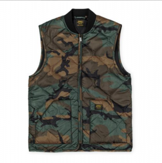 <img class='new_mark_img1' src='https://img.shop-pro.jp/img/new/icons21.gif' style='border:none;display:inline;margin:0px;padding:0px;width:auto;' />Newton Vest Liner