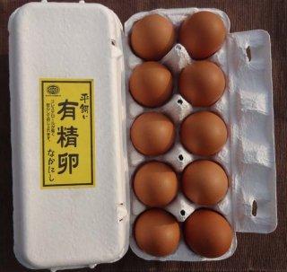 平飼い有精卵 10個入り