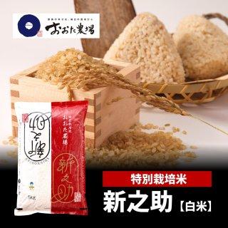 玄米 特別栽培米 新之助