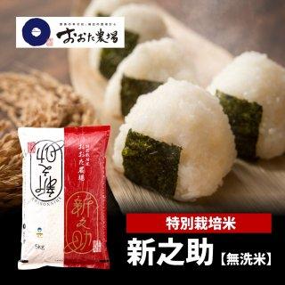 無洗米 特別栽培米 新之助