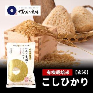 玄米 JAS有機栽培米 コシヒカリ