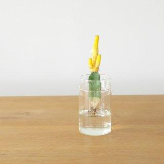 【水耕栽培】〈植物〉山吹 + 〈ベース〉カットボトルベイス 14
