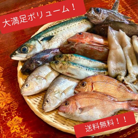 ボリュームたっぷり三陸四季折々の鮮魚