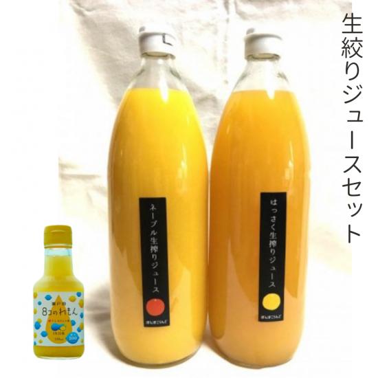 柑橘ジュースセット(ネーブル、はっさく、8コのれもん)