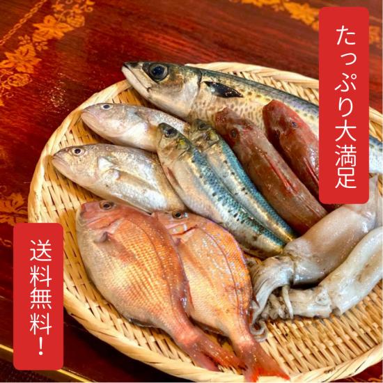 三陸鮮魚旬のおすすめセット