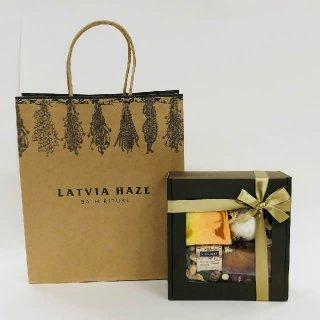 手提げ紙袋ラトビア・ヘイズの商品画像