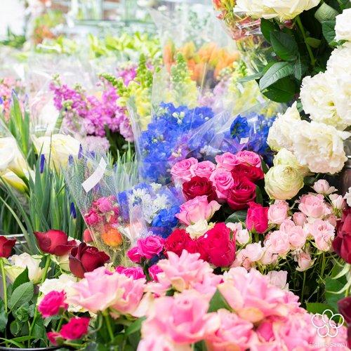 ★見つけたあなたはラッキー★お花のおまかせBOX不定期便