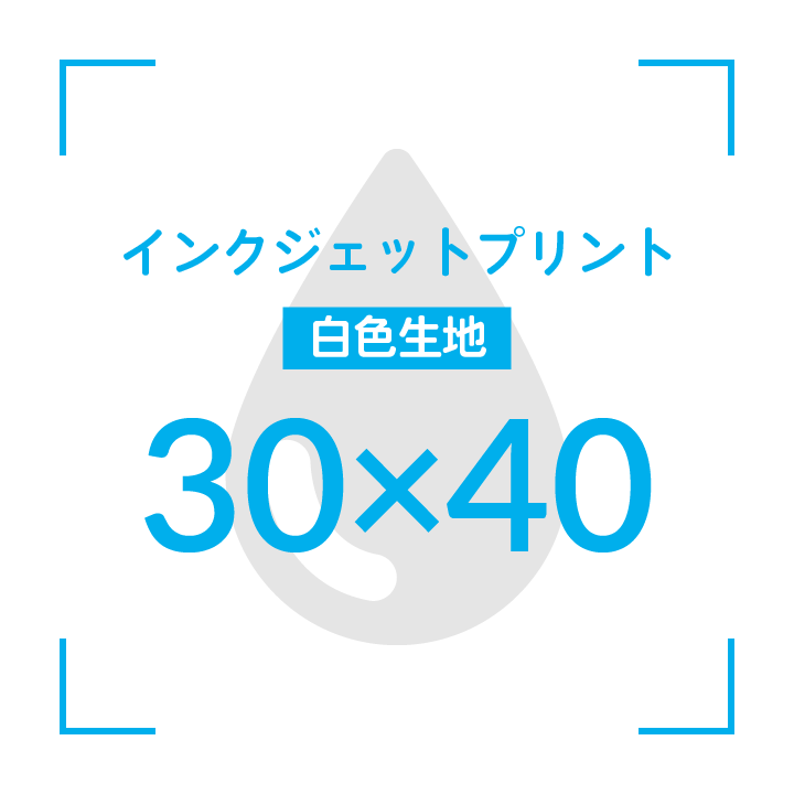 インクジェットプリント  デザイン30cmx40cm                      白色生地 〜10枚