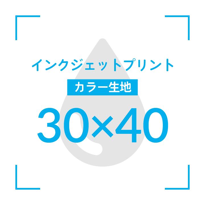インクジェットプリント  デザイン30cmx40cm                      カラー生地 51枚〜