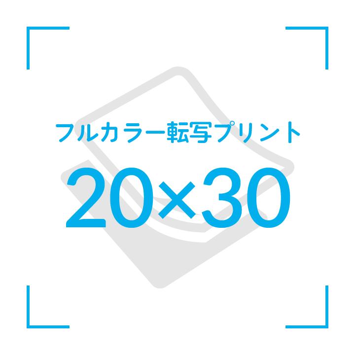 カラー転写プリント    デザイン20cmx30cm                       〜10枚
