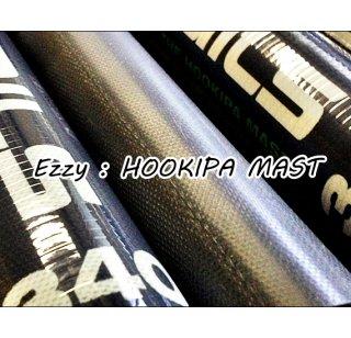 2021 Ezzy RDM (91%) mast  (EZZY)