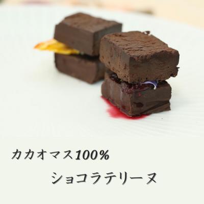 カカオマス100%ショコラテリーヌ