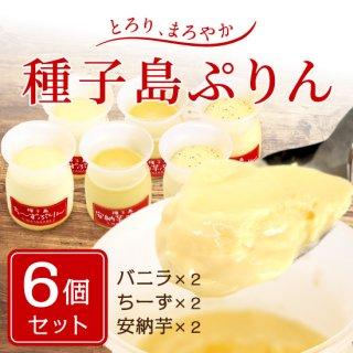 種子島プリン3種セット(6個)冷蔵便