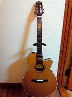 矢沢永吉 TAKAMINEハンドメイド・ギター NP65C for Eikichi Yazawa