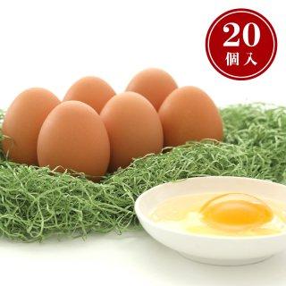 【常温便】富士山の大自然が育てた健康卵「富士の卵」(20個入)