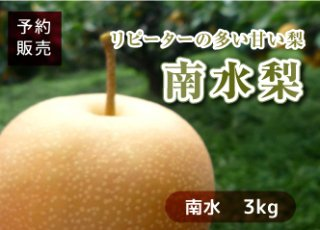 【予約(送料無料)】南水梨 3kg(7〜8玉/1箱)