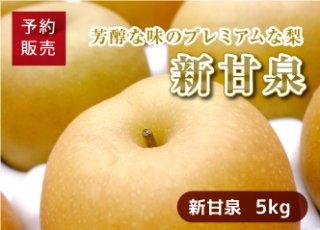 【予約・数量限定(送料無料)】新甘泉梨 5kg(12〜16玉/1箱)