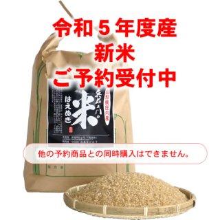 兵右エ門の米はえぬき(玄米)【2021年度産予約】