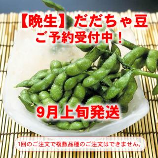 鶴岡産 権四郎だだちゃ豆(北前塩かけ塩付)【晩生種】