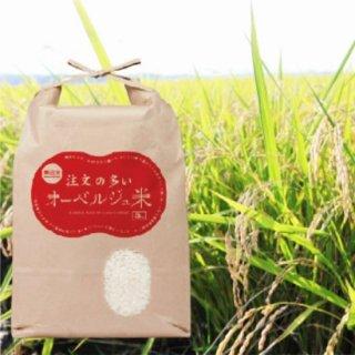 無洗米 注文の多いオーベルジュ米 5�×2袋【いちBAオリジナル商品】