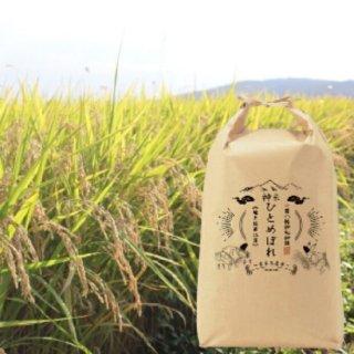 【一関八幡神社 神饌】 神米ひとめぼれ 5�×2袋【いちBAオリジナル商品】