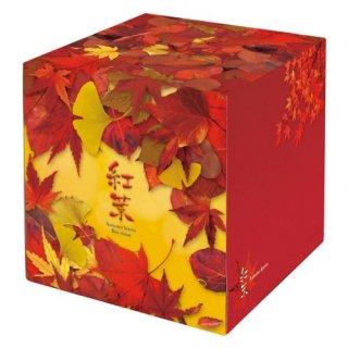 紅葉ティッシュ(サイコロ型)70W