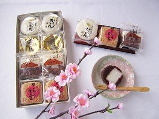和菓子詰め合わせ(10個入り)