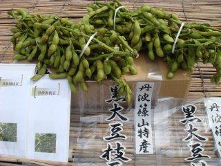 丹波産黒豆枝豆 [在来種限定] 枝付き約1kg束       お届け期間10月10日前後から25日までの商品画像