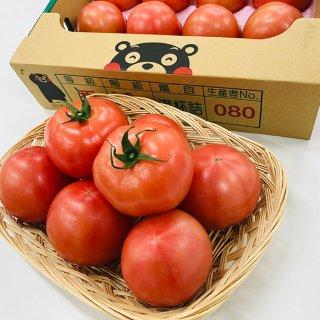 【熊本産】トマト (約4kg)