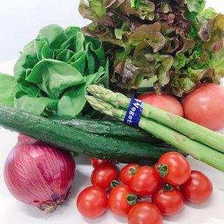 【野菜BOX】新鮮 野菜サラダセット[8品前後]
