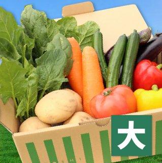 【野菜BOX】旬のお野菜セット【大】[14〜16品]送料込み