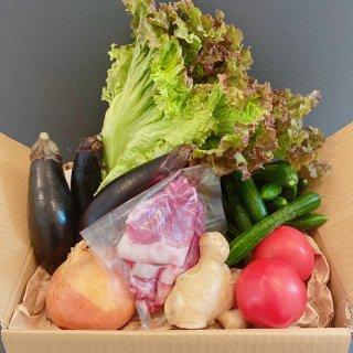 ★千葉行動 開催記念★【野菜と肉BOX】豚肉の生姜焼きを作ろう!お肉と夏野菜セット!
