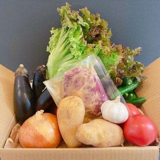 ★千葉行動 開催記念★【野菜と肉BOX】焼くだけ味噌豚!お肉と夏野菜セット!